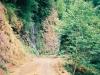 林道と落ちる滝