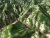 北日高縦走第1行程3D図その1