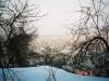 道中の樹間より札幌市西区山の手方面を望む
