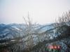 三角山より宮の森シャンツェ(ジャンプ競技場)方面を望む