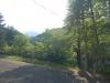 緑ヶ丘療育園
