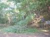 下の方の林道との分岐より宮の森登山口方面を望む